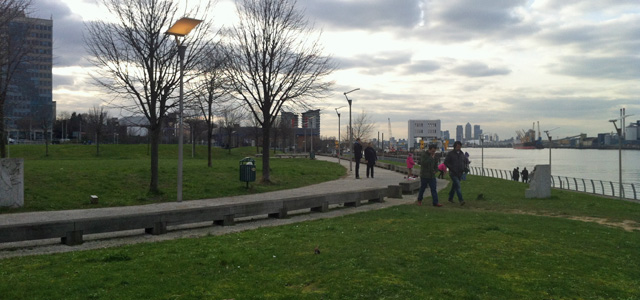 Royal Arsenal Gardens, 16 February 2013