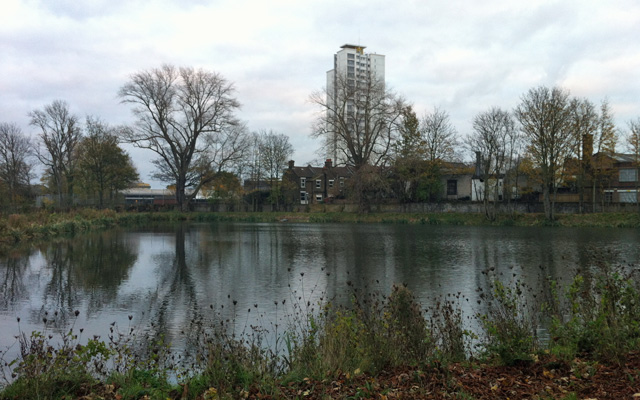 Mulgrave Pond, 24 November 2012