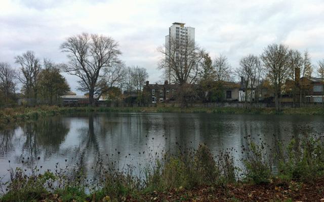 Mulgrave Pond, 24 November 2012