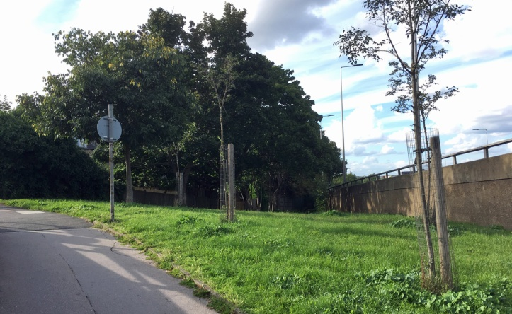 Siebert Road, 1 August 2017