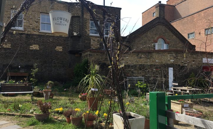 Royal Hill Community Garden